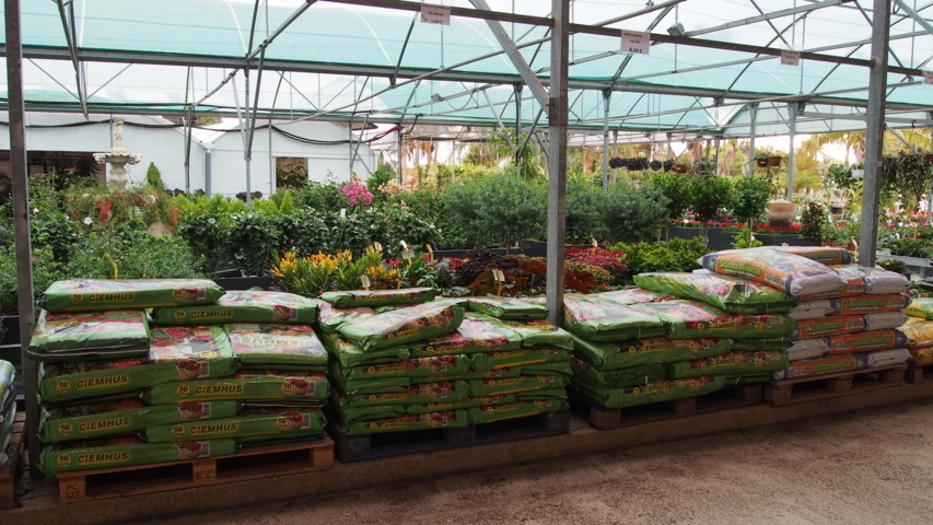 Plantes vostres vivers for Jardinerie plantes